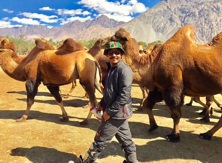 camel-safari-in-Ladakh